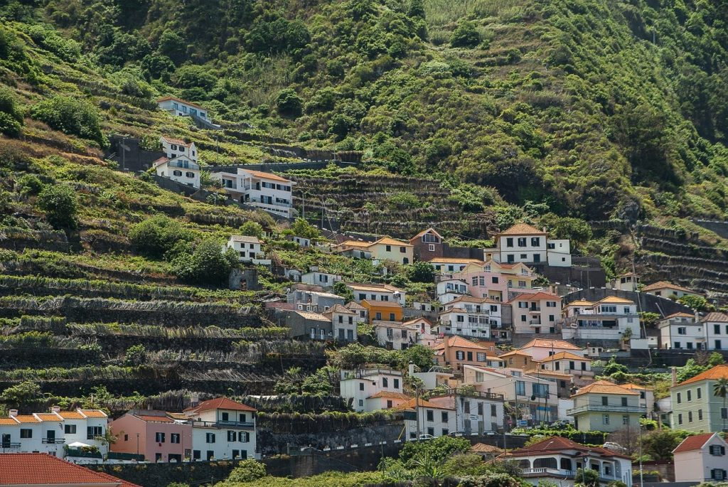 madeira-vineyards-terraced-portugal-orchards-near-me