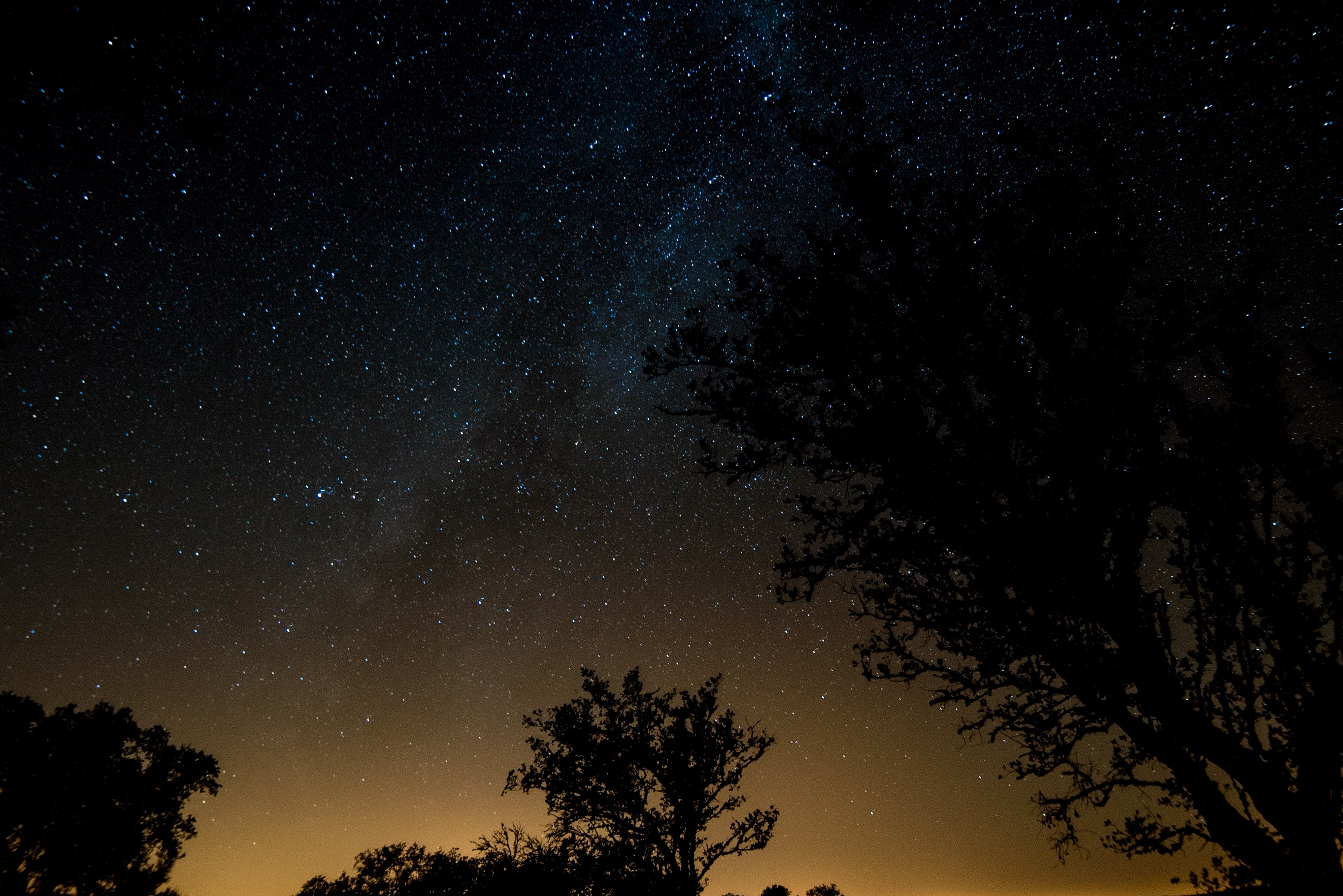 stargazing-in-portugal-seascapes-and-skies-adventure-tour-orchards-near-me