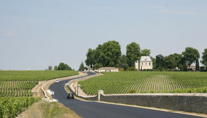 vineyards-of-the-lot-valley-france