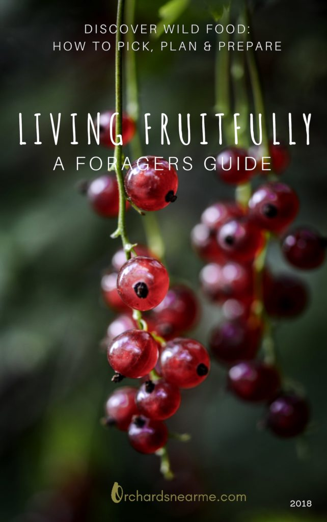 foraging-ebook-orchards-near-me-tips