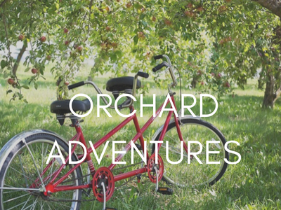 orchard-adventures-orchards-near-me