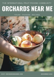 orchards-near-me-brochure