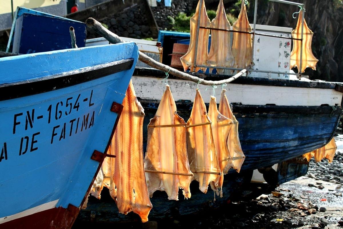 bacalau-portugal-cod-fish-dish-portuguese-foods