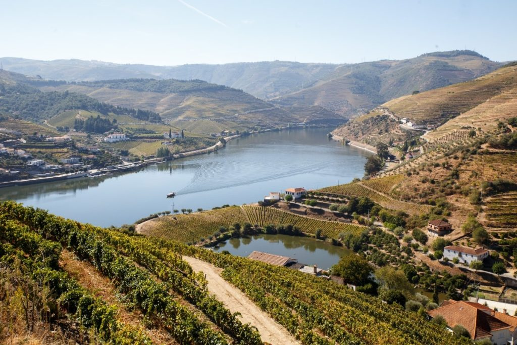 douro-valley-portugal-tour-orchards-near-me