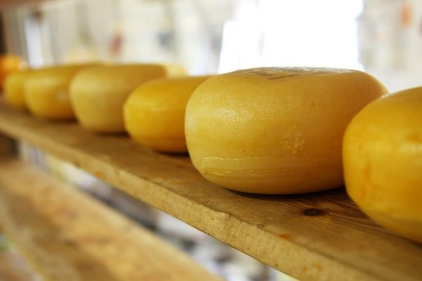 french-cheese-tour-orchards-near-me-normandy-france