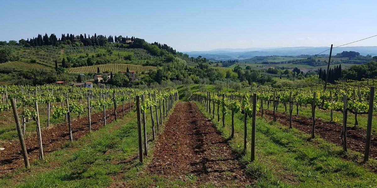 map-of-the-italian-wine-regions-italy-wine-tours