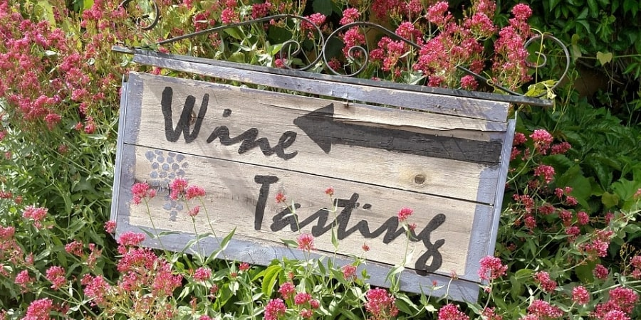 wine-tasting-pick-your-own-wedding-wine-orchards-near-me-tour