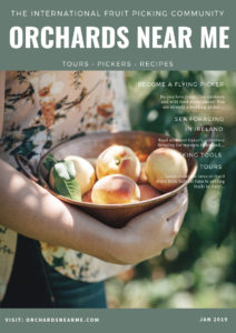 orchards-neara-me-fruit-picking-and-food-tours-magazine