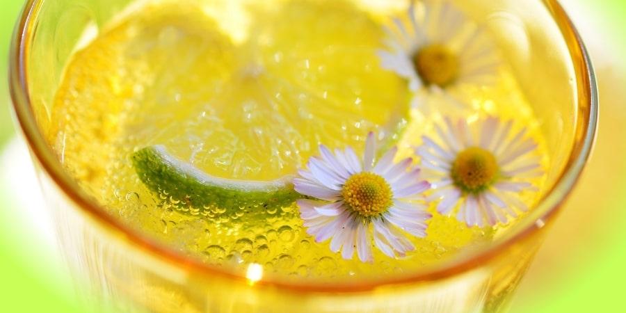 homemade-lemonade-orchards-near-me
