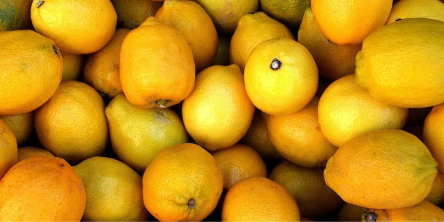 lemon-festival-menton-france-fete-du-citron-fruit-lovers