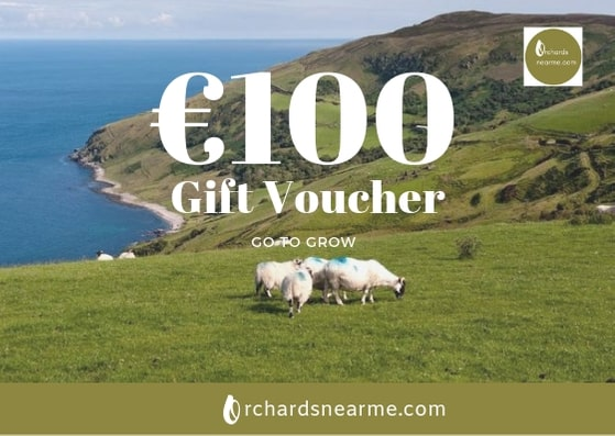 gift-voucher-orchards-near-me-100