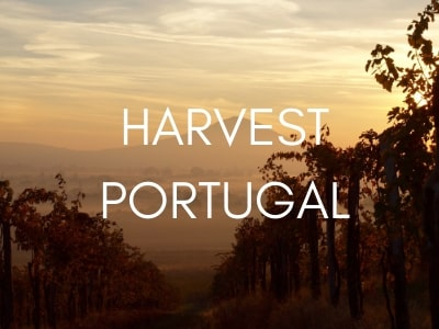 harvest-tours-portugal-orchards-near-me