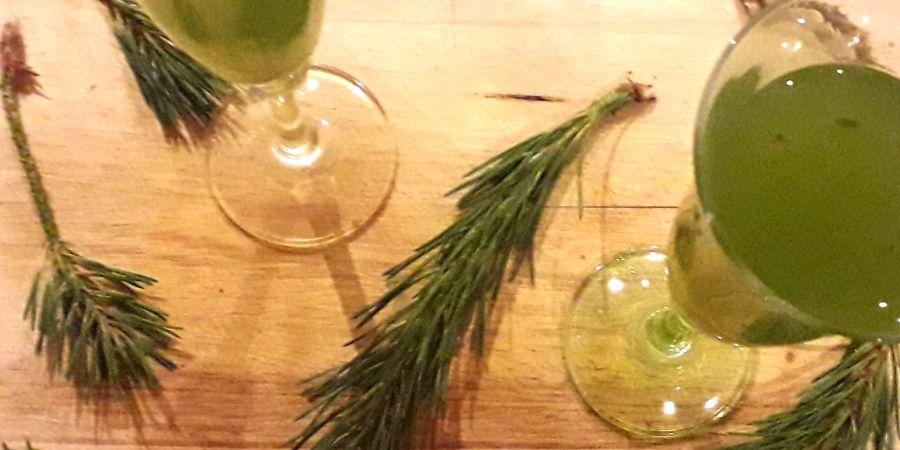 Elderflower-summer-cocktail-pine-needle-juice-recipe-foraging