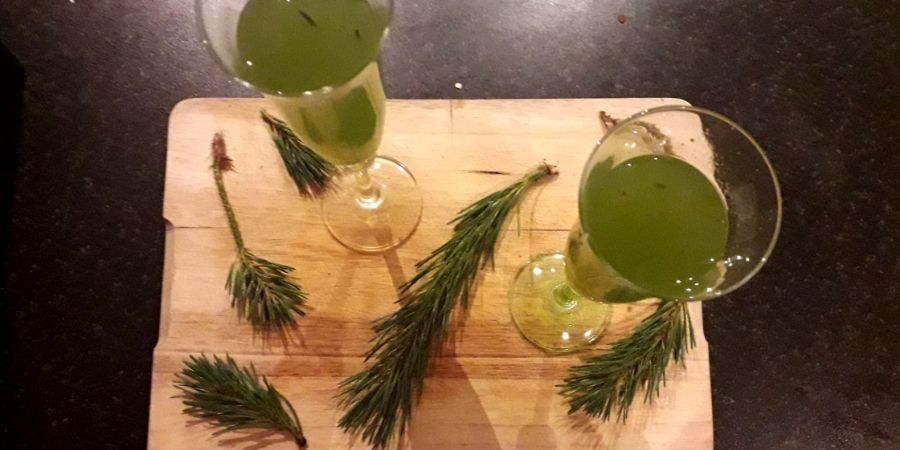 Elderflower-summer-cocktail-with-pine-needles