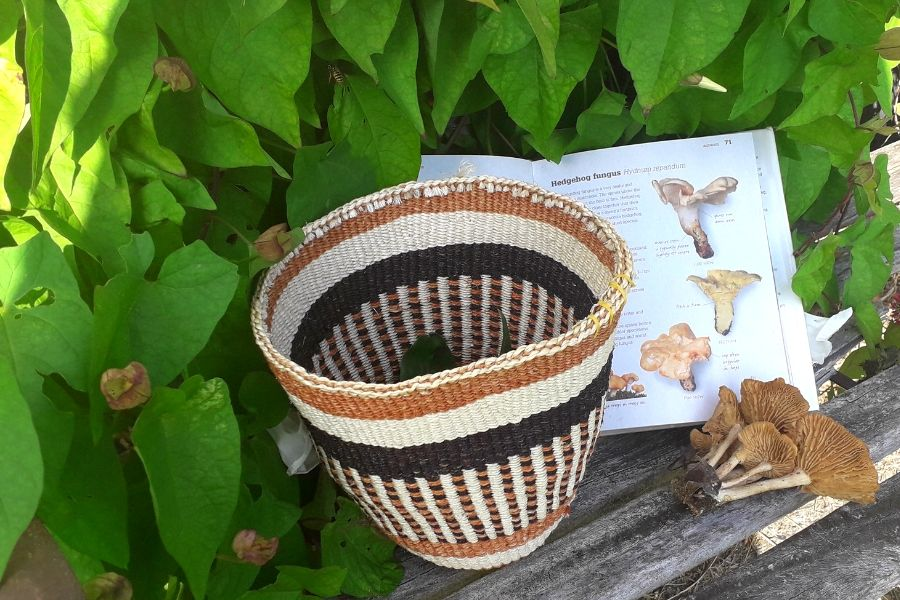 foraging-hand-woven-basket-orchards-near-me
