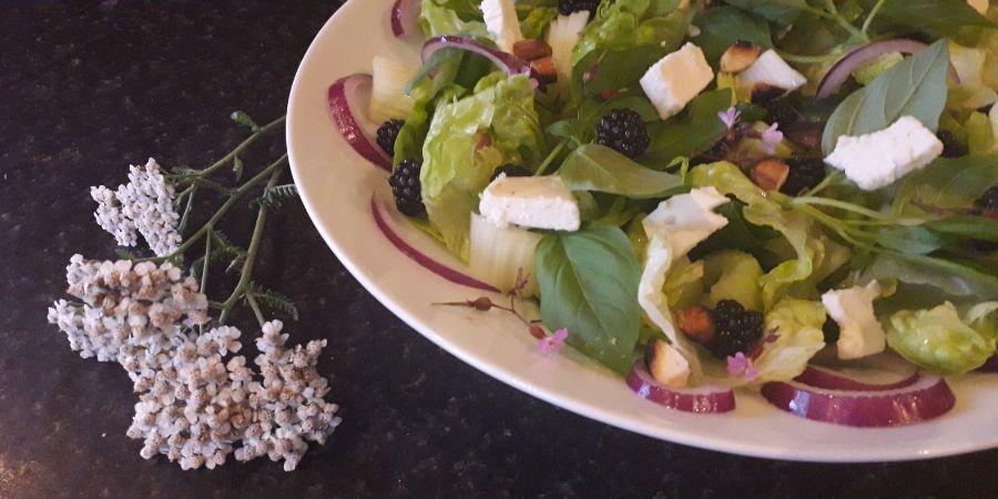 blackberry-and-basil-salad-recipe