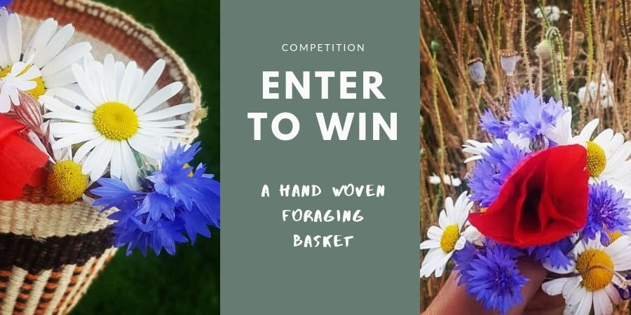 competition-win-foraging-basket-orchards-near-me
