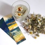 daisy-love-gift-set-be-wild-orchards-near-me