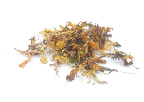 dried-honeysuckle-flowers-herb-orchards-near-me