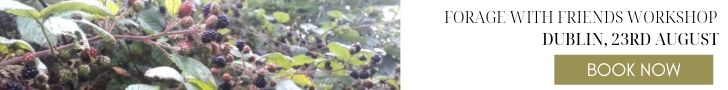 guided-berry-picking-tour-dublin-orchards-near-me