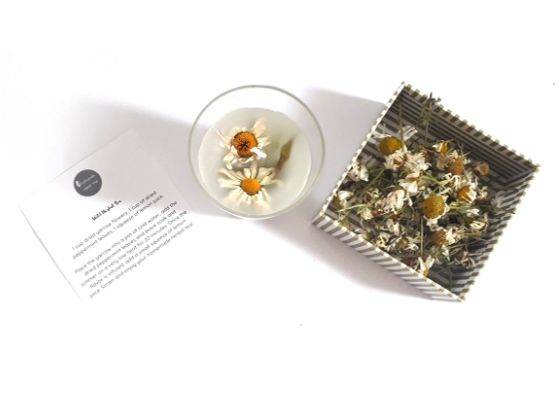 oxeye-daisy-tea-dried-herbs-orchards-near-me