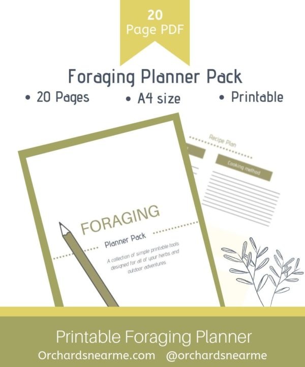 Foraging-planner-pack-orchards-near-me