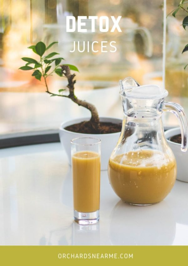 detox-juices-recipes-orchards-near-me