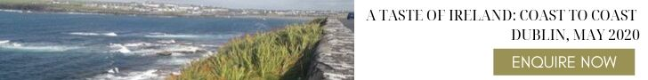 guided-coastal-foraging-ireland-orchards-near-me