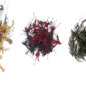 wild-dried-herb-collection-orchards-near-me