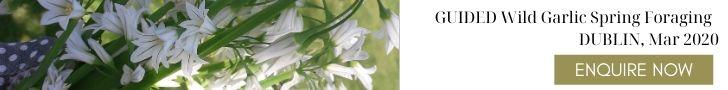 wild-garlic-foraging-workshop-orchards-near-me