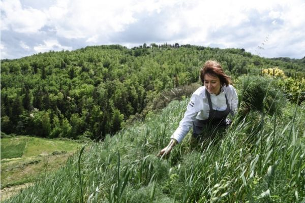 foraging-in-italy-herbs-orchards-near-me