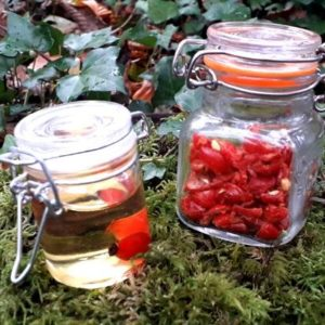 organic-rosehip-oil-dried-rosehips-orchards-near-me