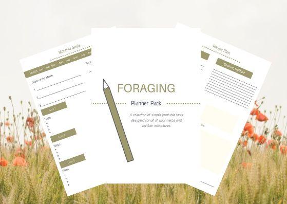 foraging-planner-workbook
