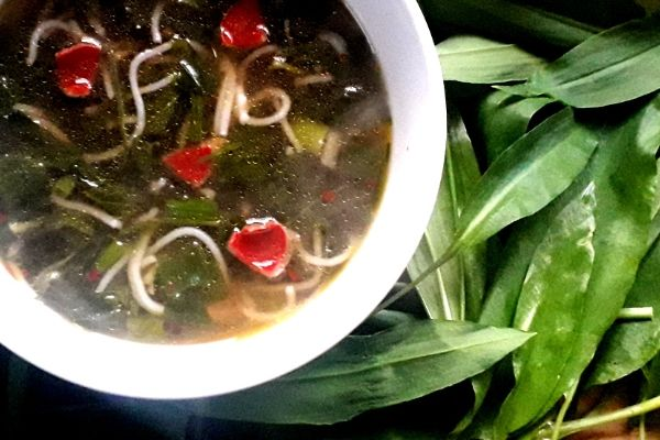 forest-pho-wild-food-recipe-orchards