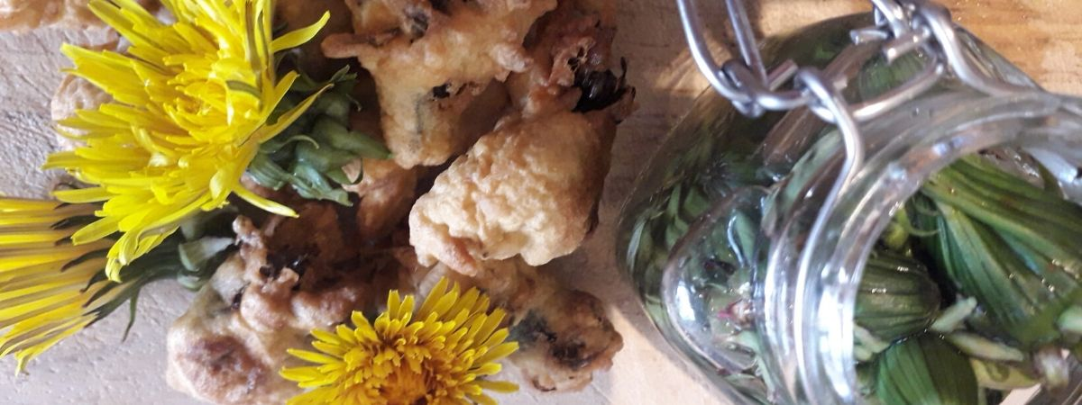 tempura-battered-dandelions-recipe-wild-food