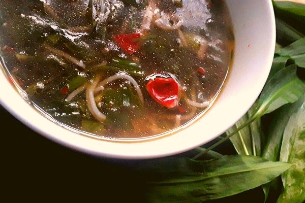 wild-herb-noodle-soup-foraging