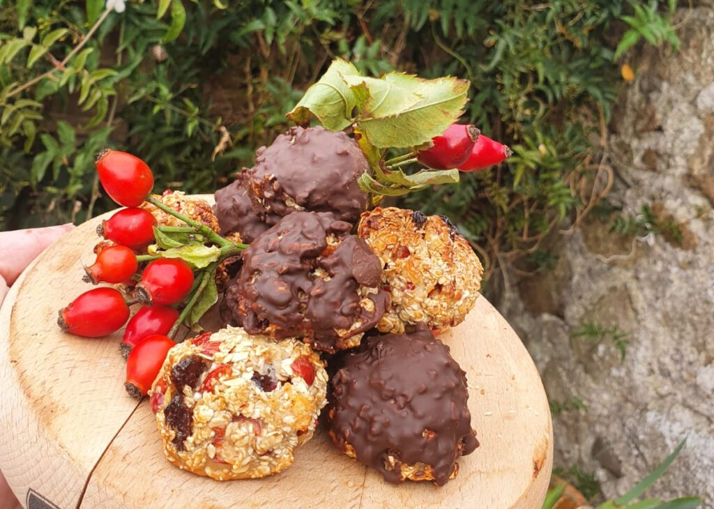 chocolate-covered-oat-balls
