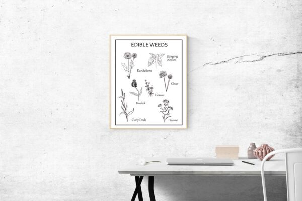 Edible-weeds-botanical-poster-printable
