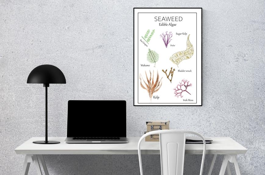 seaweed-poster-wall-art-office